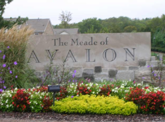 The Meade of Avalon Subdivision Homes For Sale Franklin TN