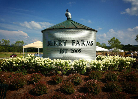Berry Farms Subdivision Homes For Sale Franklin TN