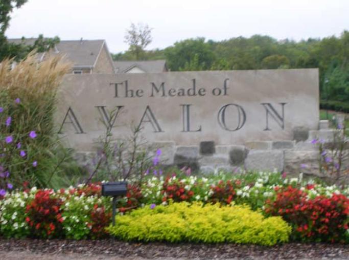 Meade of Avalon Franklin TN