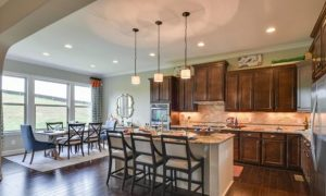 Open Houses In Radford Farms Subdivision Mt Juliet