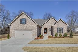 Open Houses In Ray Estates Subdivision Gallatin TN