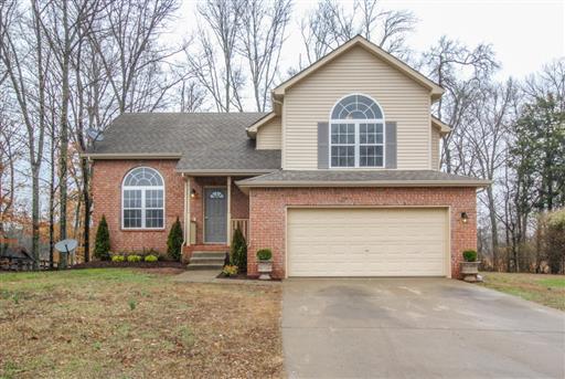 Homes For Sale Banside Subdivision Smyrna TN