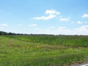 Farms and Land for sale in Clarksville TN